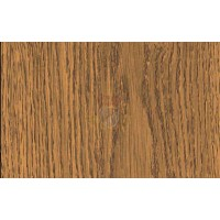 Gekkofix OAK TRONCAIS MEDIUM 10073